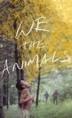 Biz Hayvanlar